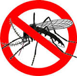 Aim 4 Natural No more mosquitoes